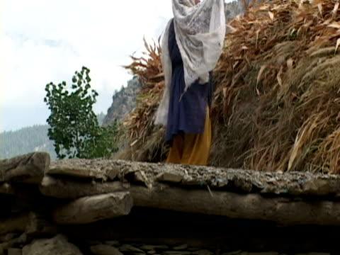 vídeos y material grabado en eventos de stock de ws zo la woman on roof of house stocking leaves for animals, shitral valley, north west province, pakistan - una mujer de mediana edad solamente