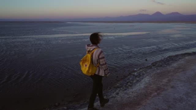 vídeos de stock e filmes b-roll de woman on the background of  scenic view of lake in atacama desert - exploração mineira