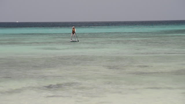 woman paddle boards on clear ocean water - one piece swimsuit stock videos & royalty-free footage