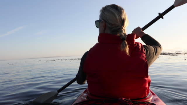 frau paddel ozean kajak über ruhige bucht, sonnenaufgang - aktivitäten und sport stock-videos und b-roll-filmmaterial