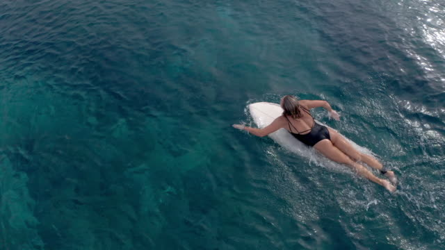 woman paddling out to surf in ocean - using a paddle stock videos & royalty-free footage