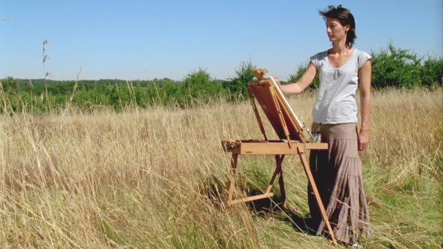 WS, Woman painting at easel in meadow, Saint Ferme, Gironde, France