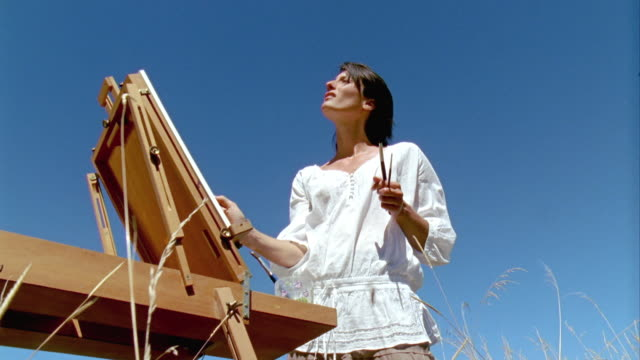 MS, LA, Woman painting at easel in meadow, Saint Ferme, Gironde, France