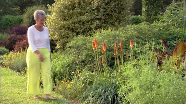 vídeos de stock e filmes b-roll de a woman pauses at some comet tail flowers in a botanical garden. - de corpo inteiro