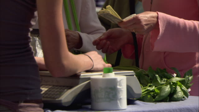 cu woman paying for bunch of fresh basil at farmer's market, close-up of hands / lake oswego, oregon, usa - bunch stock videos and b-roll footage