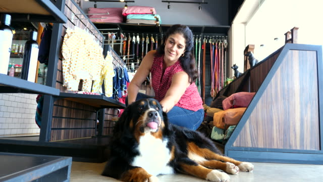 ms woman petting dog while shopping in pet store - crouching stock videos & royalty-free footage