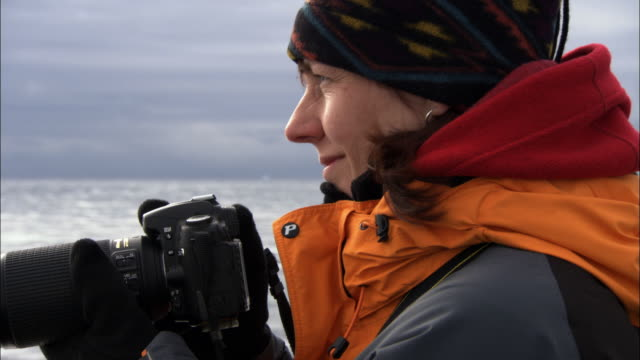 cu, woman photographing antarctic landscape from ship, antarctica - antarctica people stock videos & royalty-free footage