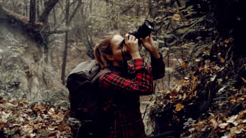 woman photographing wilderness area. autumnal landscape - photographer stock videos & royalty-free footage