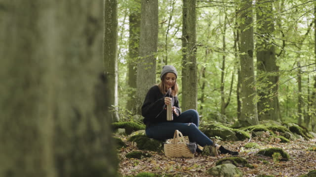woman picking mushrooms and drinking coffee in the forest - picnic basket stock videos & royalty-free footage
