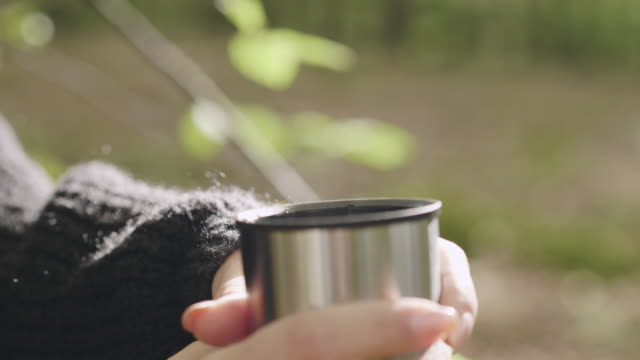 woman picking mushrooms and drinking coffee in the forest - coffee drink stock videos & royalty-free footage