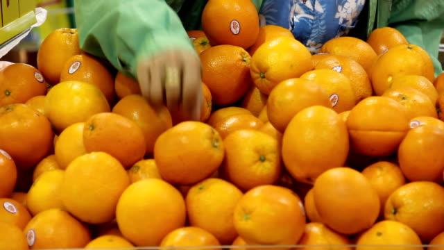 donna raccogliendo le arance. - avambraccio video stock e b–roll
