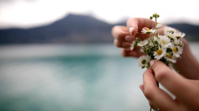 stockvideo's en b-roll-footage met vrouw oppakken van madeliefjes, bloemblaadjes uit bloemen trekken - breekbaarheid