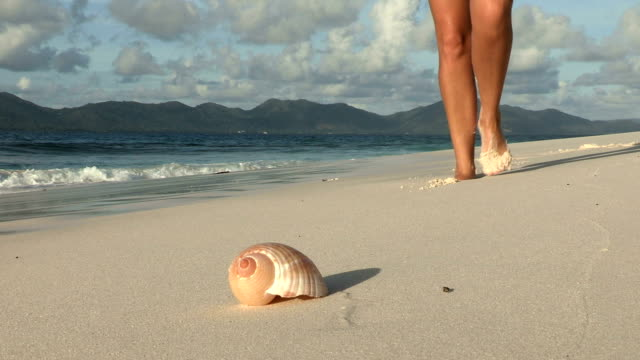 vídeos de stock, filmes e b-roll de a woman picks up a conical shell on a sandy beach in seychelles. - oceano índico