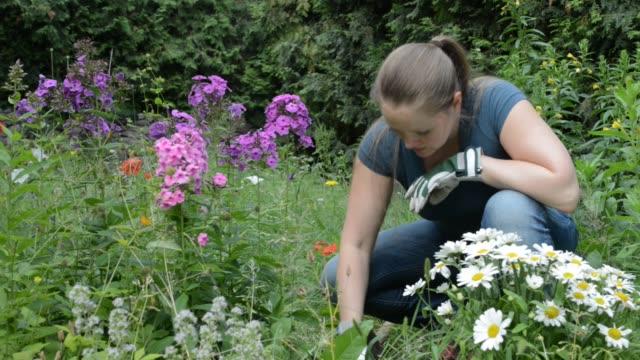 woman planting flowers - gardening glove stock videos & royalty-free footage