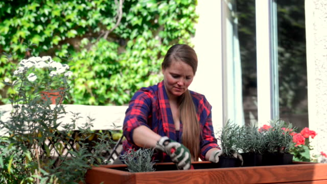 woman planting on her garden deck. - patio video stock e b–roll