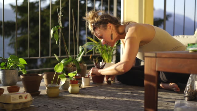 woman planting seeds, surround by vegetables and plants on balcony garden - leggings stock videos & royalty-free footage