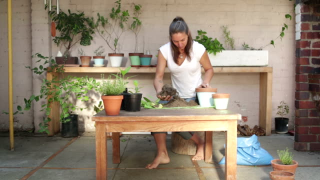 Woman Plants Herbs into Pots
