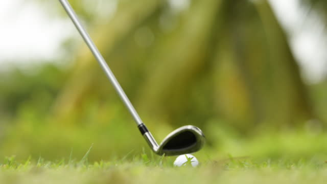 woman playing golf - ショットを決める点の映像素材/bロール