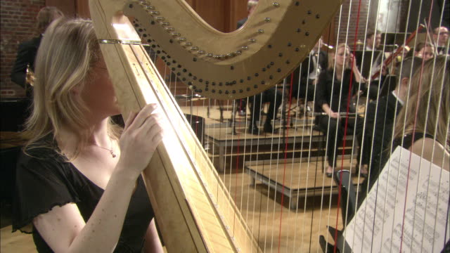 MS Woman playing harp in orchestra, musician in background / London, United Kingdom