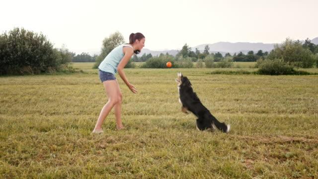SLO-MO-Frau spielt mit ihrem Border Collie Hund auf der Wiese