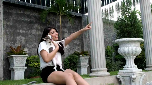 woman playing with her can and dog garden - perro stock videos & royalty-free footage