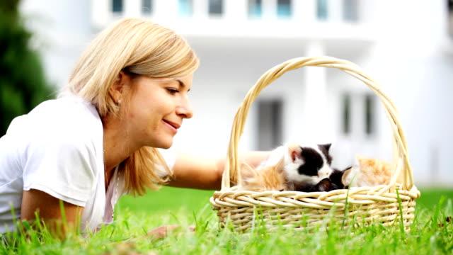 donna giocando con piccoli gatti. - gruppo di animali video stock e b–roll