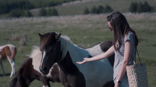 Woman playing with pony