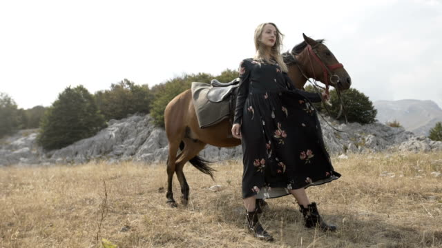 woman posing with horse. mountain landscape - bridle stock videos & royalty-free footage