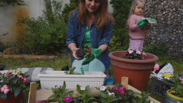 vidéos et rushes de la femme en pot des fleurs dans son jardin tandis que sa fille en bas âge l'aide - gant de jardinage