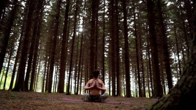 frau übt yoga im pinienwald - gebetsposition stock-videos und b-roll-filmmaterial