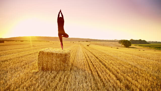DS Woman practicing yoga on a bale at sunset