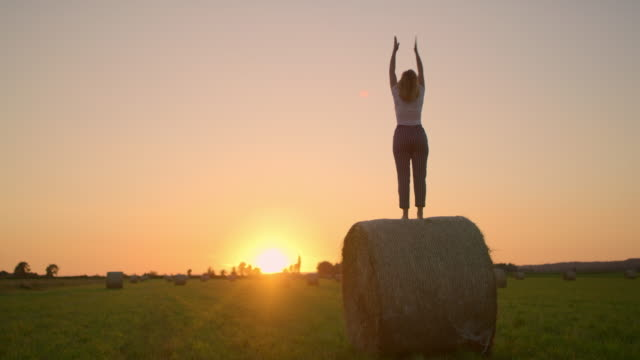 ms woman practicing yoga on top of hay bale in idyllic,rural field at sunset - hay field stock videos & royalty-free footage