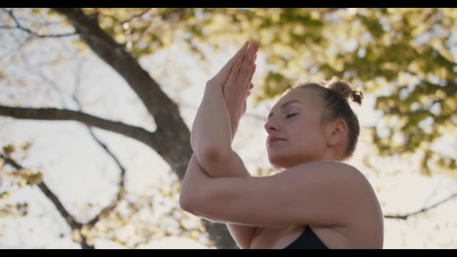 woman practicing yoga under tree in sun - buddhism stock videos & royalty-free footage
