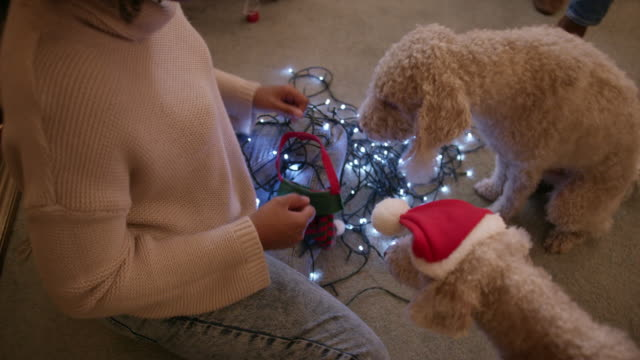 woman preparing christmas lights - christmas decoration stock videos & royalty-free footage