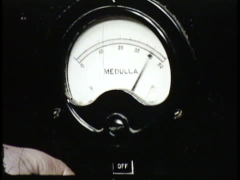 1955 MONTAGE CU MS Woman pressing button on measuring device, moving developing image submerged in liquid / New Zealand / AUDIO