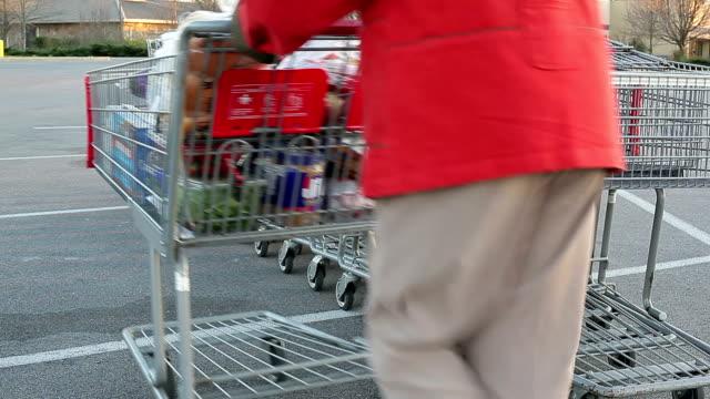 Woman Pushing Shopping Cart on the Parking Lot