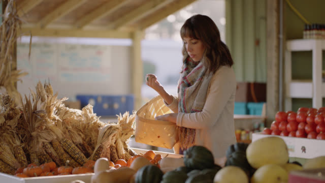 woman puts small pumpkins into her basket at a farmers market in autumn - pepper vegetable stock videos & royalty-free footage