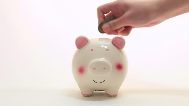 ms woman putting coins into piggybank / shibuya-ku, tokyo, japan - piggy bank stock videos & royalty-free footage