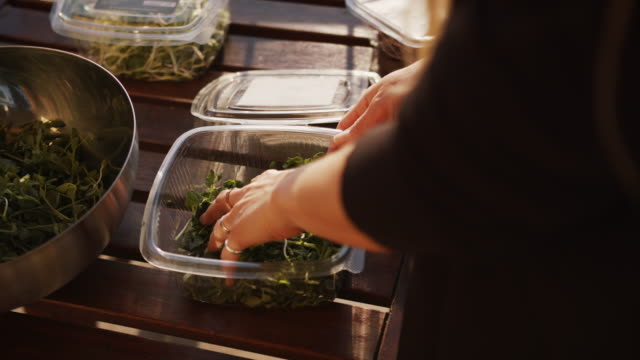 woman putting pea shoots microgreens into a bowl - desire stock videos & royalty-free footage