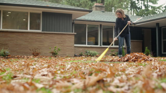 woman raking leaves in garden, panning left. - leaf stock videos & royalty-free footage