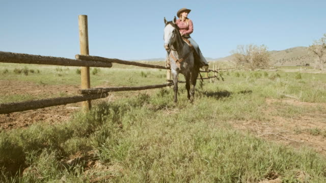 woman rancher and horse - recreational horse riding stock videos and b-roll footage