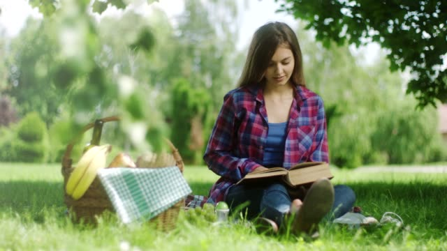 woman reading book on picnic at the nature - resting stock videos & royalty-free footage