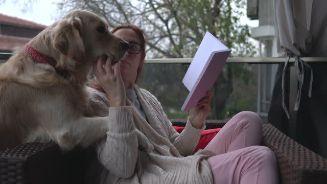 woman reading book with her dog at balcony. - 40 44 years stock videos & royalty-free footage