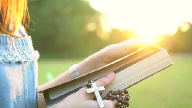 woman reading holy bible in sunset, slow motion - bible stock videos & royalty-free footage