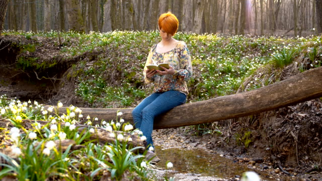 ds woman reading on a tree trunk in forest - snowdrop stock videos and b-roll footage
