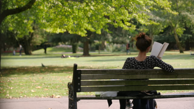woman reads book on park bench - 30 seconds or greater stock videos & royalty-free footage