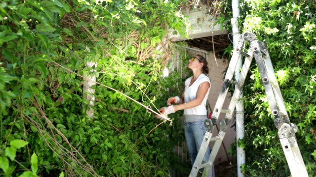 Woman ready to Clear Overgrown Garden