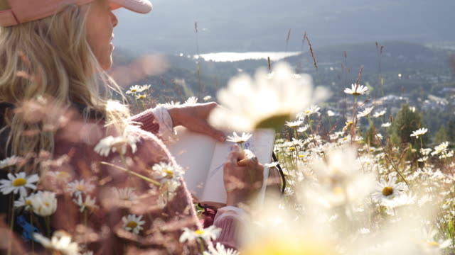 vidéos et rushes de woman relaxes in mountain meadow of daisy flowers - discovery