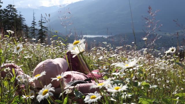 woman relaxes in mountain meadow of daisy flowers - lying on back stock videos & royalty-free footage