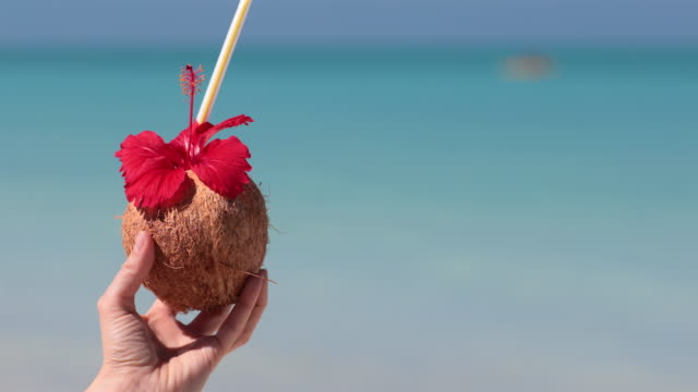 woman relaxing at beach with exotic cocktail, cuba - tropical cocktail stock videos & royalty-free footage